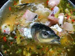 Green Sichuan Peppercorn Fish Step-10